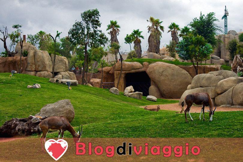10 Attrazioni turistiche più importanti di Valencia