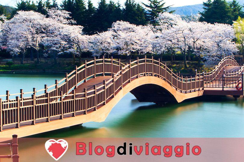 10 Cose migliori da fare a Gyeongju