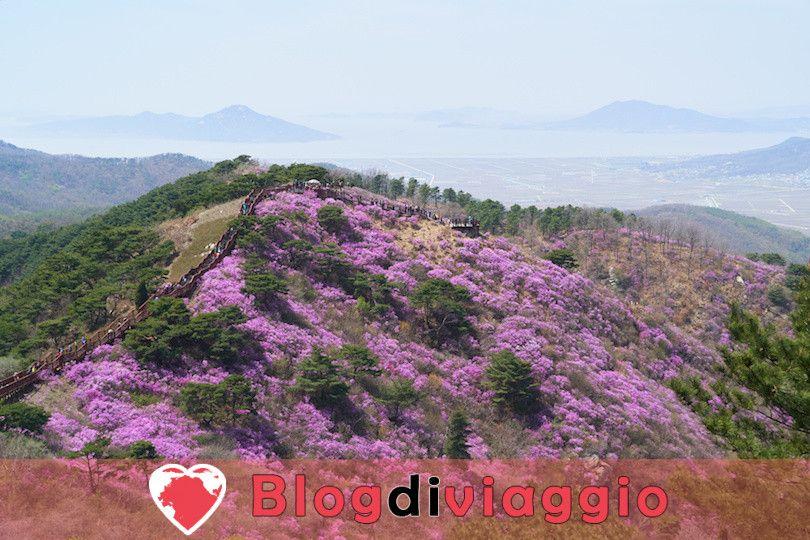 15 Principali attrazioni turistiche in Corea del Sud