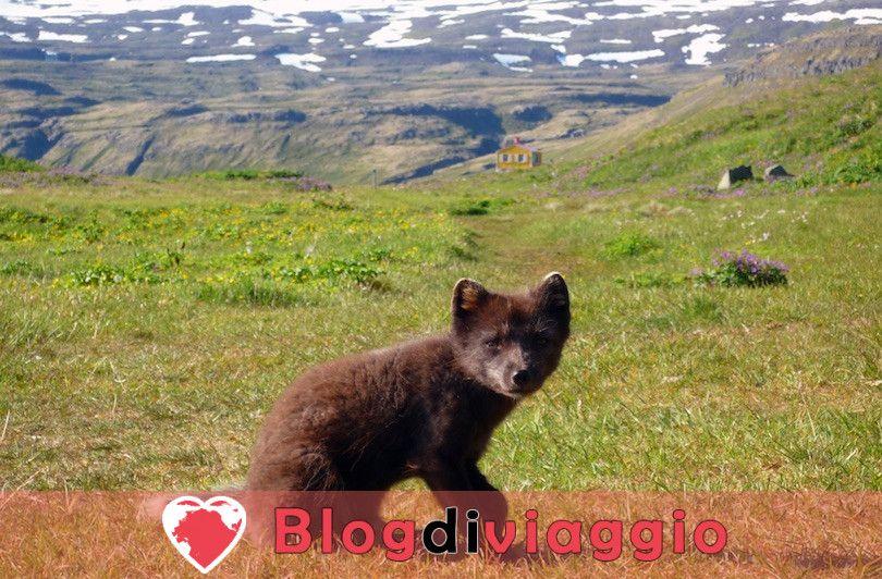 10 Luoghi da visitare in Islanda