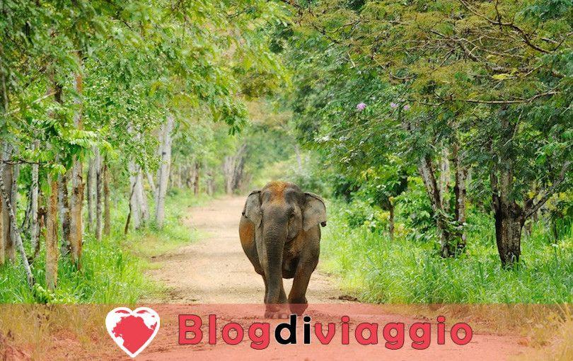 10 Parchi Nazionali più belli della Thailandia