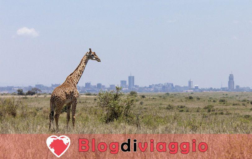 10 Principali attrazioni turistiche in Kenya