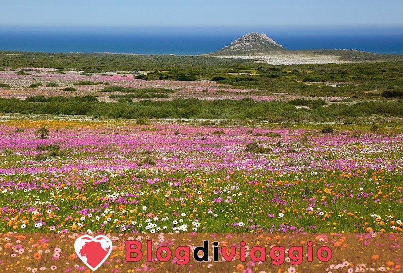 I 10 parchi nazionali più belli del Sudafrica